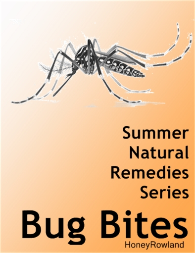 Natural Remedies for Summer: Mosquito bites