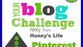 Blogger & Business Accounts BB100 Pinterest Series by Honey of Honeys Life Day