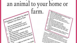 Free farm printables to help you decide to add animals to your home or farm.