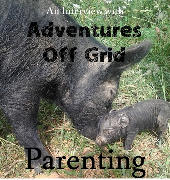 Adventures off grid parenting with HoneysLife