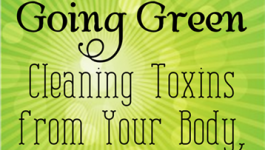 31 Day to Going Green. Cleaning Toxins from your body, home and family.